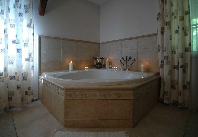 Hotel in Loucen - Loucen Alexandra - Double room