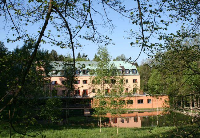 Hotel in Pocátky - Resort Svata Katerina - Pocátky - Deluxe room